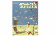 Epitaxial Growth of Au–Pt–Ni Nanorods for Direct High Selectivity H2O2 Production