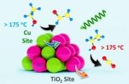 Plasmon enhanced selective electronic pathways in TiO2 supported atomically ordered bimetallic Au-Cu alloys