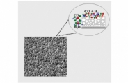 Highly Selective Conversion of CO2 to CO Achieved by a Three-Dimensional Porous Silver Electrocatalyst