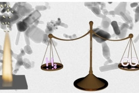 Uncovering Atomic‐Scale Stability and Reactivity in Engineered Zinc Oxide Electrocatalysts for Controllable Syngas Production