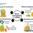 Understanding, Monitoring, and Controlling Biofilm Growth in Drinking Water Distribution Systems