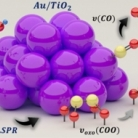 C-C Cleaving by Au/TiO2 during Ethanol Oxidation: Understanding Bandgap Photo-Excitation and Plasmon Mediated Charge Transfer via Quantitative In-Situ DRIFTS