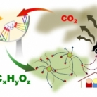 A review on photo-thermal catalytic conversion of carbon dioxide