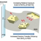 Interfacing BiVO 4  with Reduced Graphene Oxide for Enhanced Photoactivity: A Tale of Facet Dependence of Electron Shuttling
